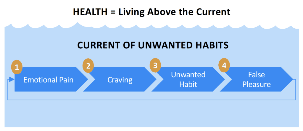 Daniel Hochman, M.D.'s current of addiction model